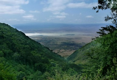 Ngorongoro Direct