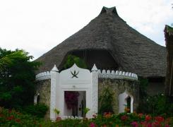 Zanzibar Gallery 8