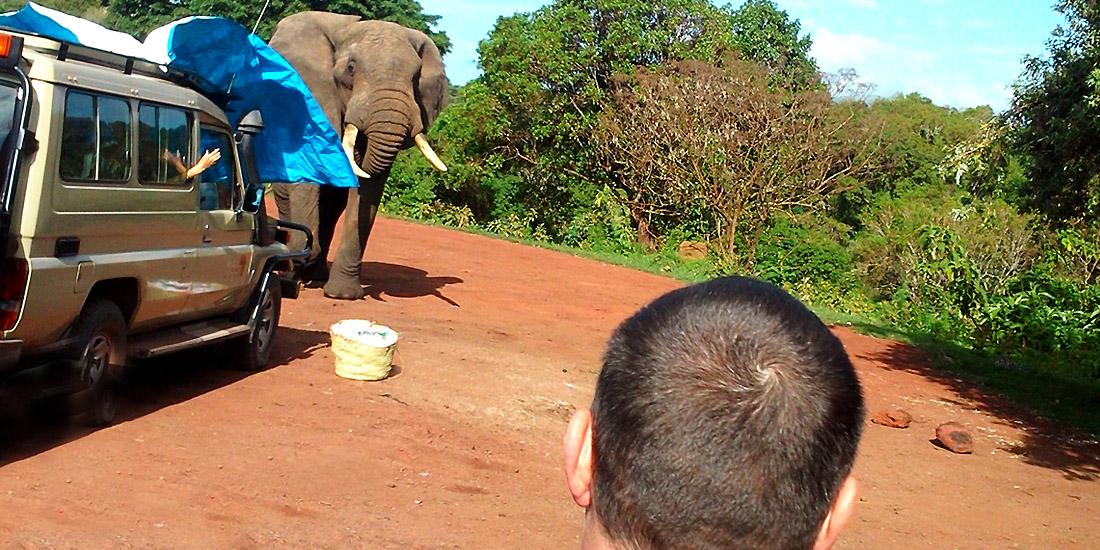 Safari-Tours-2